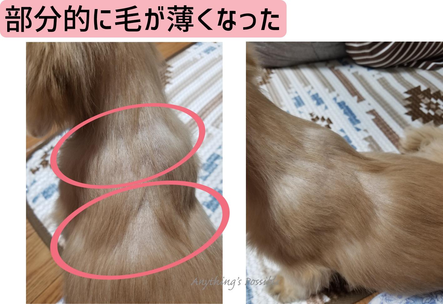 ステロイドの副作用(毛が薄く